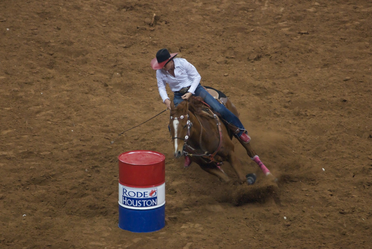 A photo from Rodeo Houston.
